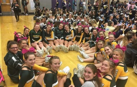 Cheer team competes in recent tournament