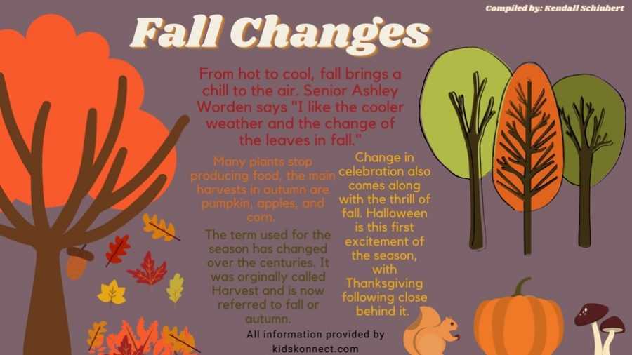 Changes in the fall