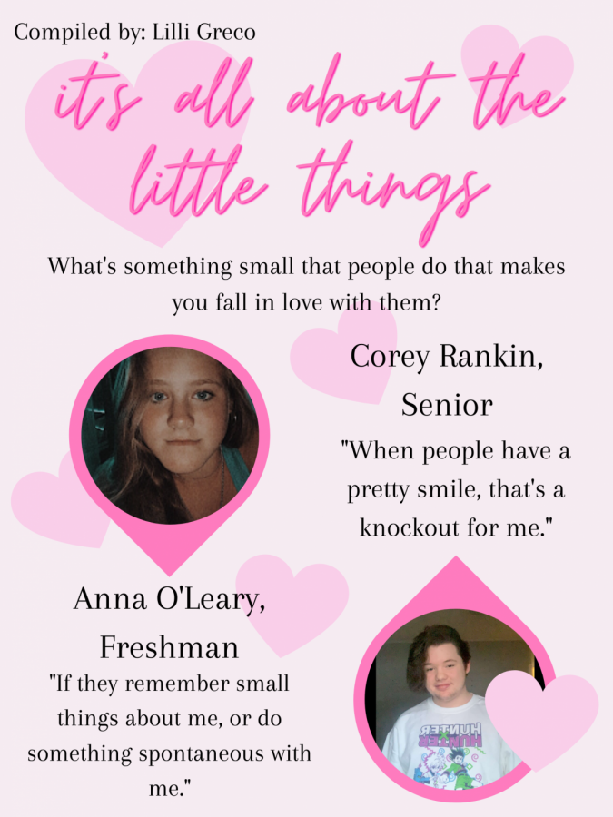 All the little things; what small things make people fall in love?